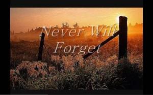 Never will Forget - Ian Calvert