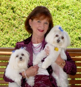Claire Abel with her Maltese babies