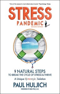 Stress Pandemic book by Paul Huljich