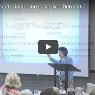 The Leading Cause of Dementia is not Alzheimers