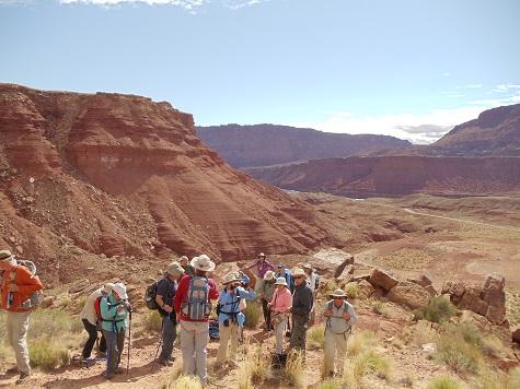 Road Scholar - Sue Olsen in pink Arizona scenic group 2016-04-11
