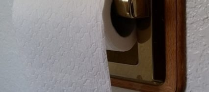 Toilet Paper roll Straight scoop on poop