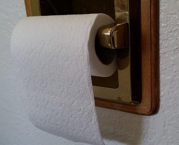 Toilet Paper roll Straight scoop on poop