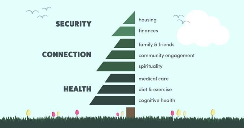 The Elder Health Tree graphic