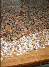 Memory-Jogging-Puzzles_Karen- Miller-many- pieces