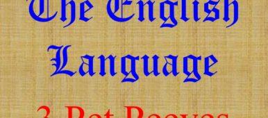 http://thecaregiversvoice.com/wp-content/uploads/2017/11/English-Language-3-Pet-peeves-Avadians-musings